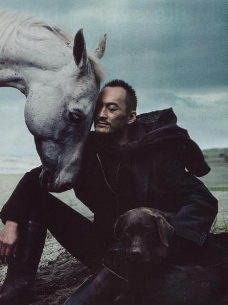 ken watanabe and dog and horse 330jFkgpdU